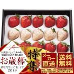 数量限定 お歳暮 メーカー直送 紅白いちご (計200g) お取り寄せ プレゼント 果物 フルーツ 御歳暮