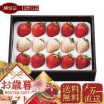 お歳暮 メーカー直送 紅白いちご(計200g) フルーツ 果物 ギフト 贈り物 プレゼント 冬 お取り寄せ 御歳暮
