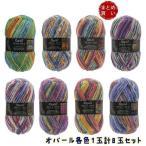 ショッピング毛糸 毛糸 中細 オパール フンデルトヴァッサー#1430(まとめ買い5玉セット) Opal