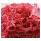 赤とさか 1袋500g とさかのり 国産 同梱にオススメ