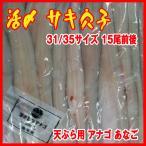 活〆 穴子 31/35サイズ     15尾前後   開き 天ぷら用 アナゴ あなご