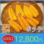 【超高級食材】 ボラ子  500g  ボラの卵