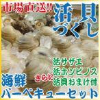 活貝づくし 海鮮バーベキューセット  約2-3人前(活サザエ約500g(4-6個前後)+活ホンビノス約500g(4-8個前後)+お楽しみおまけ付)