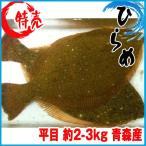 【業務用】沖ひらめ 約2-3kg 青森産 ヒラメ 平目 沖ヒラメ