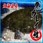 北海道産 黒カレイ 約2.5kg以上(3-6尾前後入) かれ
