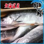 時鮭 冷凍  1尾約2kg前後  サケ  北海道産さけ シャケ しゃけ
