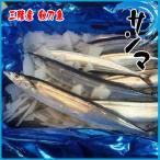 秋刀魚 約1kg (約5尾前後入り) 三陸産 さんま サンマ