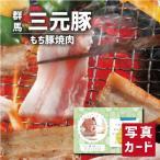 お歳暮 冬 ギフト 送料無料 上州 三元もち豚 焼肉 お祝い 出産 結婚 内祝い gift 肉 豚肉 ブランド 国産 豚 食べ物 ランキング (SK)軽