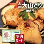 お歳暮 冬 ギフト 送料無料 鳥取 大山どり 焼肉 お祝い 出産 結婚 内祝い gift 肉 産直 国産 鶏肉 ランキング (SK)軽