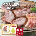 お歳暮 冬 ギフト 送料無料 イベリコ豚 焼肉 お祝い 出産 結婚 内祝い gift 肉 豚肉 ブランド 国産 豚 食べ物 ランキング (SK)軽