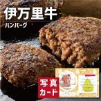 お歳暮 冬 ギフト 送料無料 佐賀 伊万里牛 ハンバーグ お祝い 出産 結婚 内祝い gift 牛肉 肉 食べ物 ランキング (SK)軽