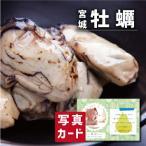 お歳暮 冬 ギフト 送料無料 宮城 牡蠣 セット お祝い 出産 結婚 内祝い gift 産直 海鮮 食べ物 ランキング (SK)軽