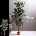 観葉植物 フェイク 本物そっくり フェイクグリーン 「フィカス 690」 FBC 大型 造花 インテリア 室内