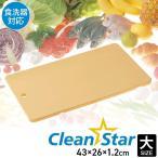 まな板 「まな板抗菌クリーンスター(大)」 抗菌 使い分け 耐熱 食洗器対応 耐久性 カッティングボード