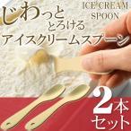 Yahoo!i-shop7【1本→激安167円以下!】お得な2本セット!驚くほどスッとすくえる アルミ製 アイスクリームスプーン 2P 理想のなめらかさ◎ 熱伝導式 ◇ アイススプーン 2本組
