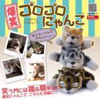 ┐╢╞░бї▓╗е╗еєе╡б╝д╟╛╨дд┼╛д▓дыбк┬ч╛╨дде┤еэе┤еэд╦дудєд│ Cat RoBo ╞░дп╟н енеуе├е╚ д╠ддд░дыд▀ ┼┼├╙╝░ ═╜┬м╔╘╟╜д╩╞░дн длдядддд ┼┼╞░╟н ╖у░┬ б■ ╟·╛╨е┤еэд╦дудє
