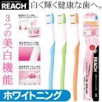 白く輝く健康な歯へ リーチ REACH ホワイトニング 歯ブラシ とってもコンパクト ふつう ステインと歯垢を除去 3つの美白機能 極細毛 ◇ REACH ホワイトニング