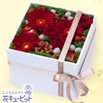 クリスマスフラワー 花キューピットの冬のモダンアレンジメント