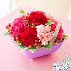 母の日ギフト 花キューピットのAnniversaryママ(ピンク)