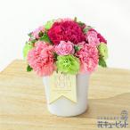母の日 ギフト プレゼント 花 カーネーション 誕生日 60代 70代 花キューピットのグラマラス(ピンク)