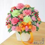 母の日 ギフト 2021 プレゼント 花 カーネーション 誕生日 60代 70代 花キューピットのカーネーションのミックスアレンジメント