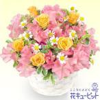 ショッピング春 春のお祝い 花キューピットのスイートピーのアレンジメント