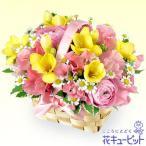 ショッピング春 春のお祝い 花キューピットのフリージアのウッドバスケット