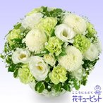 ペット用フラワーギフト・お供え 花キューピットのペット用お供えアレンジメント
