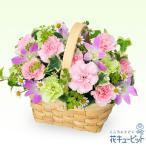ペット用フラワーギフト・お供え・お供えのアレンジメント 花キューピット ペット 供花