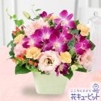 誕生日フラワーギフト 花キューピットのデンファレとトルコキキョウのアレンジメント花 ギフト 誕生日 プレゼント