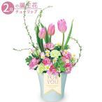 2月の誕生花(チューリップ等) 誕生日 お祝い 記念日 プレゼント 家族 友人 花キューピットの春のチューリップアレンジメント