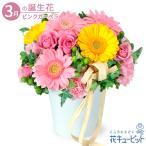 3月の誕生花(ピンクガーベラ等) 誕生日 お祝い 記念日 プレゼント 花キューピットの2色ガーベラのナチュラルアレンジメント