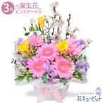 3月の誕生花(ピンクガーベラ等) 誕生日 お祝い 記念日 プレゼント 花キューピットの3月のバースデーアレンジメント