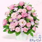9月の誕生花(デンファレ等) 花キューピットのトルコキキョウのピンクアレンジメント