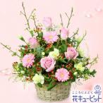 11月の誕生花(ピンクガーベラ等) 花キューピットのピンクのアレンジメント