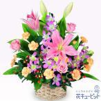 お祝い 花キューピットのピンクユリのアレンジメント