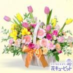 開店祝い・開業祝い 花キューピットのスプリングバスケット