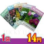 パラダイスで買える「花の種 ちびタネ 花の種子 500袋販売 春夏まき花の種 ノベルティ 花の種 総付け景品 総付景品」の画像です。価格は14円になります。