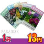 花の種 ちびタネ 花の種子 1000袋販売 ノベルティ 花の種 春咲き花の種 春蒔き 総付け景品 総付景品