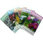 花の種 ちびタネ 花の種子 1袋 ノベルティ 花の種 秋咲き花の種 秋蒔き花の種  総付け景品 総付景品