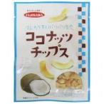 (代引き不可)(送料無料)フジサワ ココナッツチップス 20g×20セット