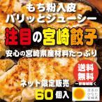 宮崎県産食材たっぷりの宮崎ぎょうざ 60個 送料無料