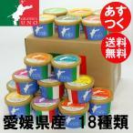 愛南ゴールド 赤い雫(イチゴ)など 愛媛県産ジェラート アイス18個 送料無料
