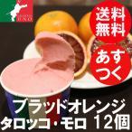 愛媛産高級柑橘 ブラッドオレンジ ジェラート アイス12個 お取り寄せ 送料無料