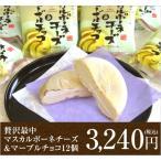 贅沢最中マスカルポーネチーズ&マーブルチョコ【モナカアイス12個詰め合わせ】【送料込】