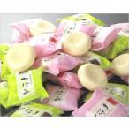 つぼみ業務用アイスクリーム(96個入り)48個×2箱