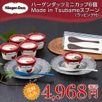 ハーゲンダッツ ミニカップ6個&Made in TSUBAMEアイススプーン2個セット【送料込】【ラッピング付】