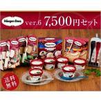 ハーゲンダッツ 7,500円セット&Made in TSUBAMEアイススプーン2個セット(ver.5)【送料込】【ラッピング付】(9種・21個入り)