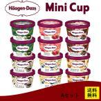 【HD】 ハーゲンダッツ  アイスクリーム ギフトにもおススメ A バラエティ6種セット 12個入り