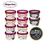 ハーゲンダッツ アイスクリーム ミニカップ 10個(5種類×2個)+丹波篠山アイスクリーム 1個付き